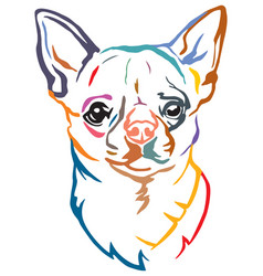 Colorful decorative portrait dog chihuahua vector