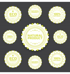 Ecological badges vector image vector image