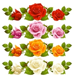 rose horizontal vignette vector image