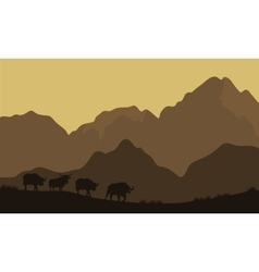 Silhouette of bull in mountain vector