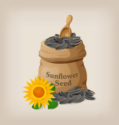 sunflower seeds in a sack and spoon vector image