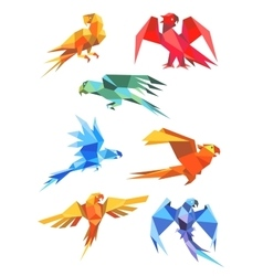 Colorful origami paper stylized parrots vector image vector image