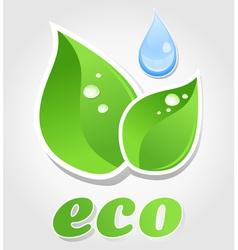 Eco leaf symbol vector