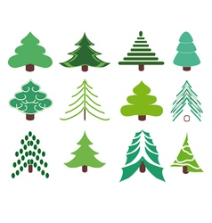 Collection of fir trees vector