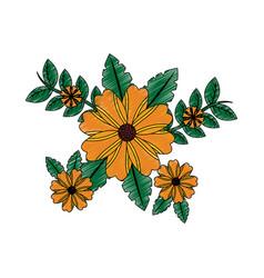 flowers natural leaves branch botanical vector image