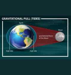 Gravitational pull tides diagram vector