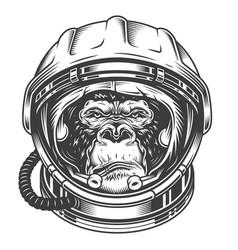 Head of gorilla vector