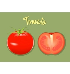 red fresh tomato whole and half vector image