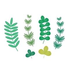 Seaweed leaf vector