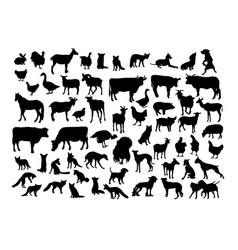 Animal activity silhouettes vector