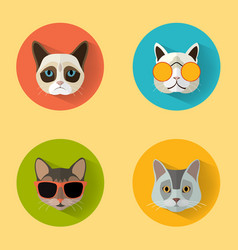 cat portraits with flat design vector image