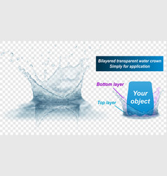 Double layer water splash crown with reflection vector
