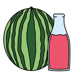 Fresh watermelon juice fruit in botttle vector