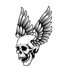 winged human skull isolated on white design vector image