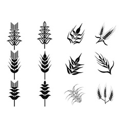 black wheat icons set vector image vector image