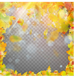autumn leaves frame and bokeh eps 10 vector image