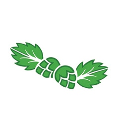 Hops icons vector image vector image