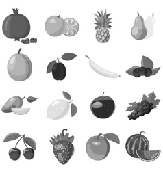 Fruit icons set gray monochrome style vector image