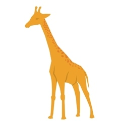 African animal icon giraffe design vector image