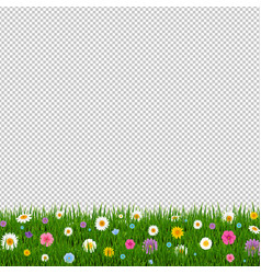 Grass and flowers border transparent background vector