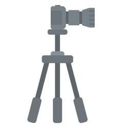 Photo camera on tripod vector image