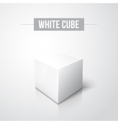 White cube on white background with reflection vector image