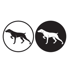 hunting dog vector image vector image