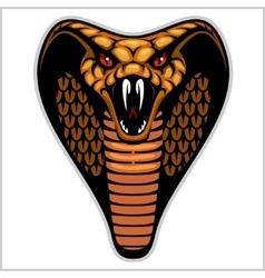 Snake head on white - vector