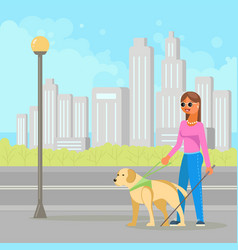 blind woman with guide dog vector image
