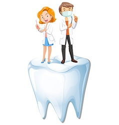 Dentists and tooth model vector image