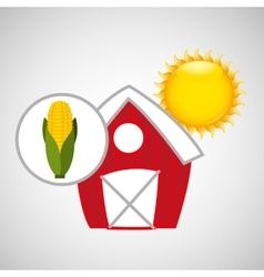 farm countryside food corn design vector image