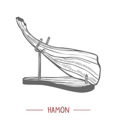 hamon in hand drawn graphic style vector image