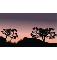 Tree in hill scenery silhouette vector