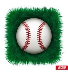 Icon Baseball ball in green grass vector image