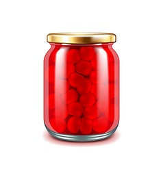 Cherry jam isolated on white vector image vector image