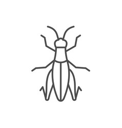 grasshopper line outline or insect concept vector image