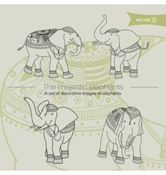 Majestic elefants vector