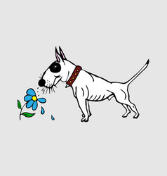 Painted cute white english bull terrier with a vector