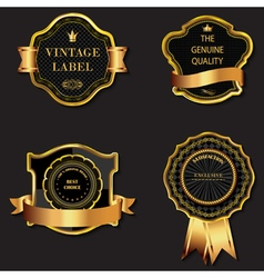Set of golden decorative ornate black vector image