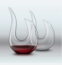 Two graceful decanters vector