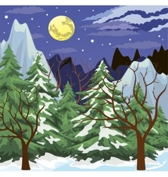 Night mountain landscape vector image