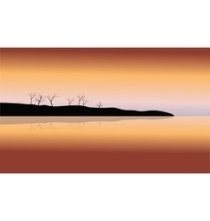 Silhouette of dry tree in islands vector image