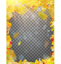 Autumn leaves template eps 10 vector