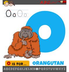 Letter o worksheet with cartoon orangutan animal vector