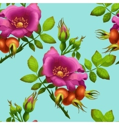 Seamless pattern of bright wild rose vector