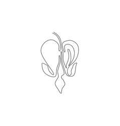 Single one line drawing beauty lamprocapnos vector