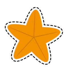 Starfish or sea star icon image vector