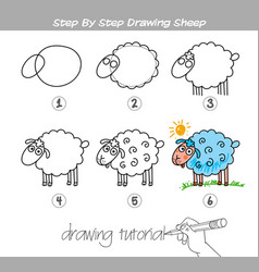 Step by step drawing sheep vector