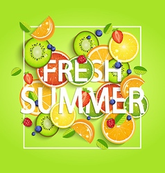Summer background with fruits vector image vector image