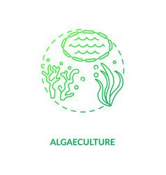 Algaeculture concept icon vector